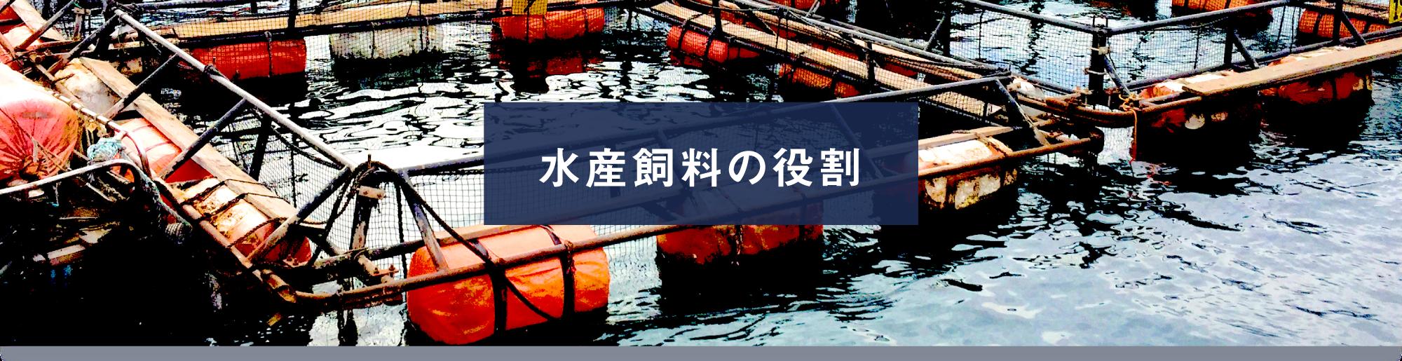水産飼料の役割