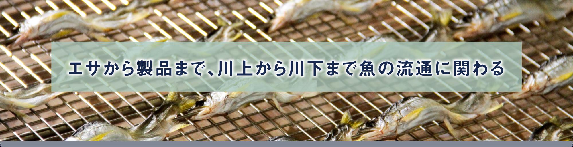 エサから製品まで、川上から川下まで魚の流通に関わる